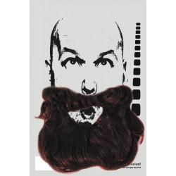 Barbe + moustache châtain