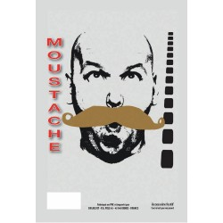 Moustache gendarme blonde