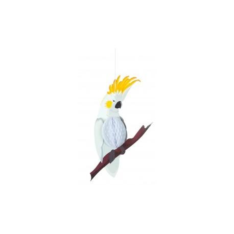 Perroquet blanc alvéolé